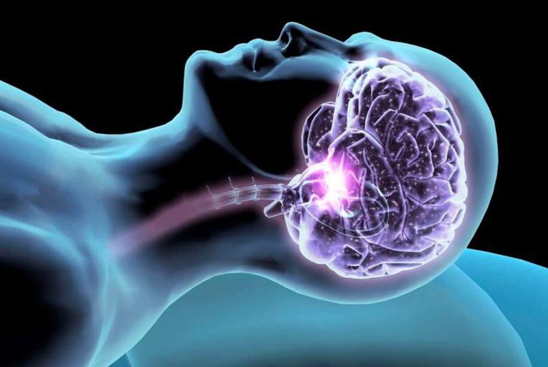 neurofisiologia sonno sportevolution webinar